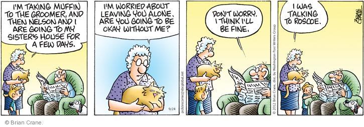 Comic Strip Brian Crane  Pickles 2012-09-24 husband