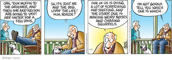 Comic Strip Brian Crane  Pickles 2012-09-25 take