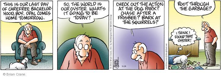 Comic Strip Brian Crane  Pickles 2012-09-28 check