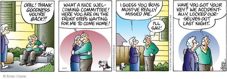 Comic Strip Brian Crane  Pickles 2012-09-29 relationship