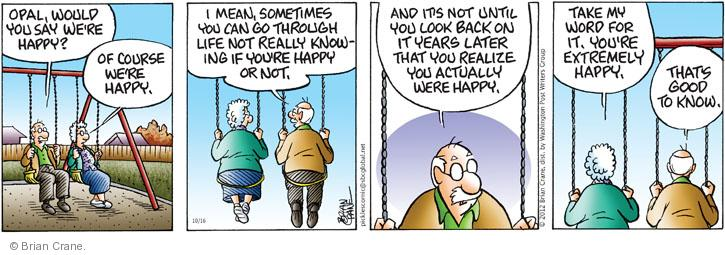 Comic Strip Brian Crane  Pickles 2012-10-16 married couple