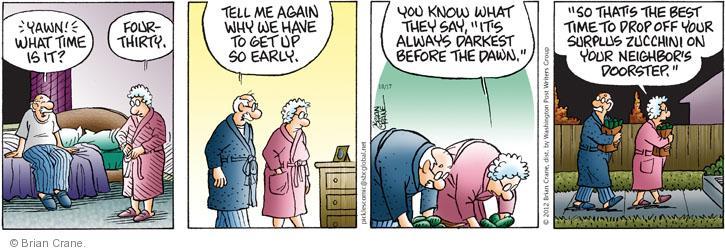 Comic Strip Brian Crane  Pickles 2012-10-17 darkest