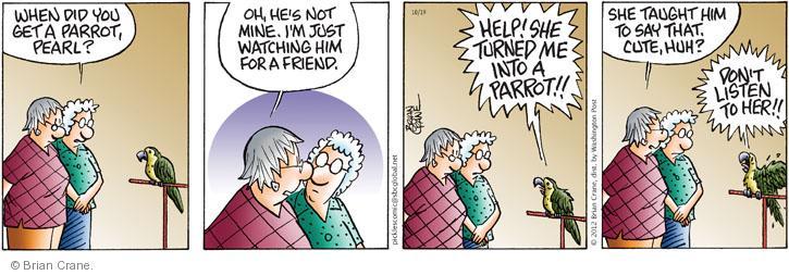 Comic Strip Brian Crane  Pickles 2012-10-19 bird