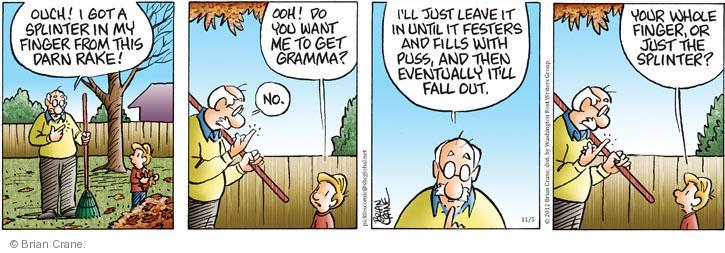Comic Strip Brian Crane  Pickles 2012-11-05 rake leaves