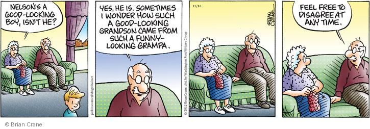 Comic Strip Brian Crane  Pickles 2012-11-16 grandparent