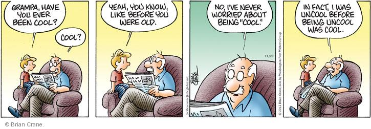 Comic Strip Brian Crane  Pickles 2012-11-20 age