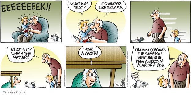 Comic Strip Brian Crane  Pickles 2012-11-18 grizzly bear