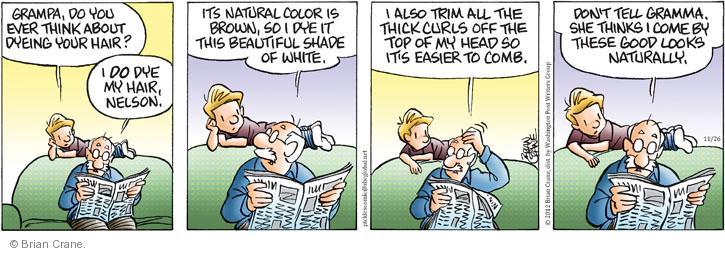 Comic Strip Brian Crane  Pickles 2012-11-26 gray hair