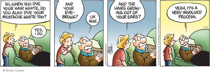 Comic Strip Brian Crane  Pickles 2012-11-27 gray hair