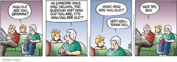 Comic Strip Brian Crane  Pickles 2012-11-29 female