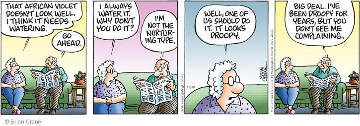 Comic Strip Brian Crane  Pickles 2012-11-30 watering plant