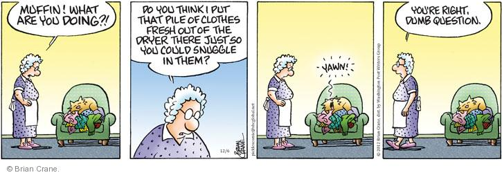 Comic Strip Brian Crane  Pickles 2012-12-06 warm