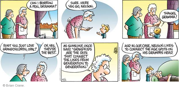 Comic Strip Brian Crane  Pickles 2012-12-02 grandparent