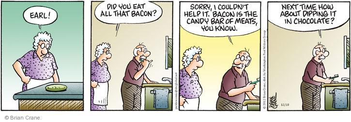 Comic Strip Brian Crane  Pickles 2012-12-18 meat