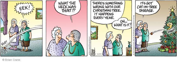 Comic Strip Brian Crane  Pickles 2012-12-20 Christmas tree