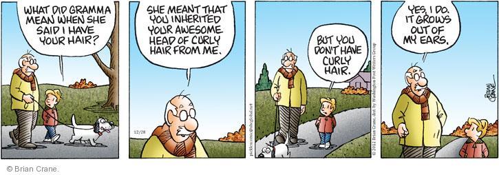 Comic Strip Brian Crane  Pickles 2012-12-28 hair