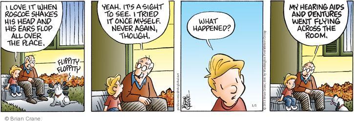 Comic Strip Brian Crane  Pickles 2013-01-05 shake