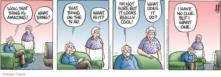 Comic Strip Brian Crane  Pickles 2013-01-07 one