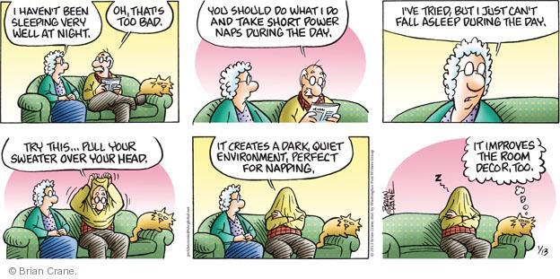 Comic Strip Brian Crane  Pickles 2013-01-13 sweater