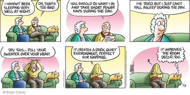 Comic Strip Brian Crane  Pickles 2013-01-13 dark