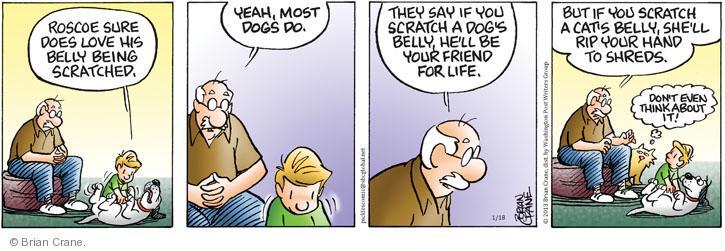 Comic Strip Brian Crane  Pickles 2013-01-18 behavior