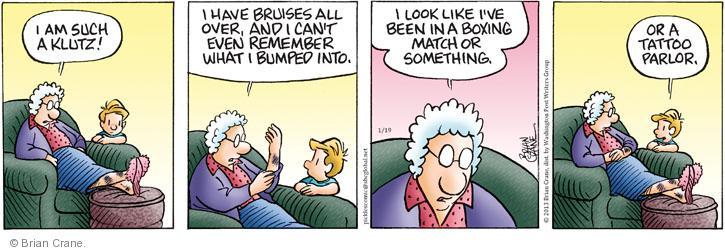 Comic Strip Brian Crane  Pickles 2013-01-19 over