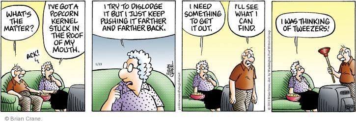 Comic Strip Brian Crane  Pickles 2013-01-23 plunger
