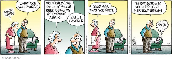 Comic Strip Brian Crane  Pickles 2013-01-26 check