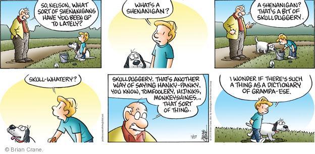 Comic Strip Brian Crane  Pickles 2013-01-27 dialect