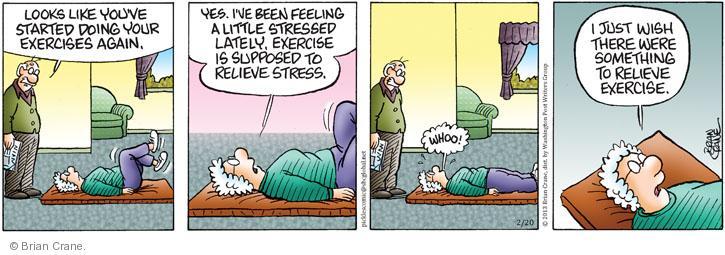Comic Strip Brian Crane  Pickles 2013-02-20 stress