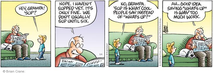 Comic Strip Brian Crane  Pickles 2013-03-06 grandparent