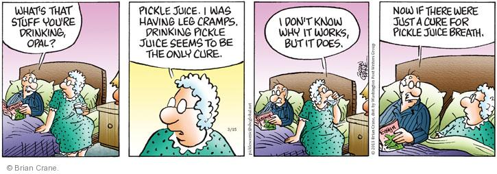 Comic Strip Brian Crane  Pickles 2013-03-15 juice