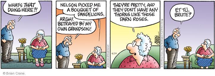 Cartoonist Brian Crane  Pickles 2013-04-24 rose