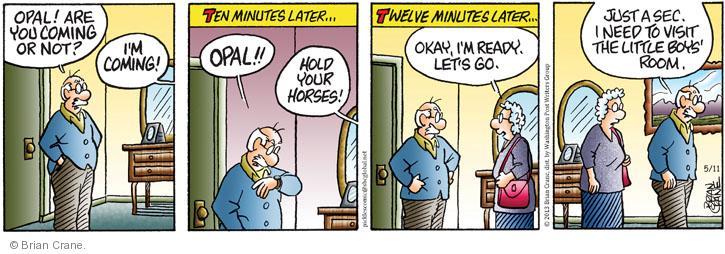 Comic Strip Brian Crane  Pickles 2013-05-11 ten minutes