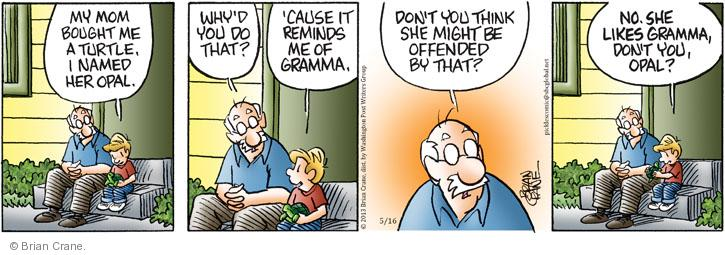 Comic Strip Brian Crane  Pickles 2013-05-16 cause