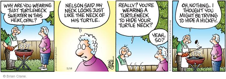 Why are you wearing that turtleneck sweater in this heat, Opal? Nelson said my neck looks just like the neck of his turtle. Really? Youre wearing a turtleneck to hide your turtleneck? Yeah, so? Oh, nothing. I thought you might be trying to hide a hickey.