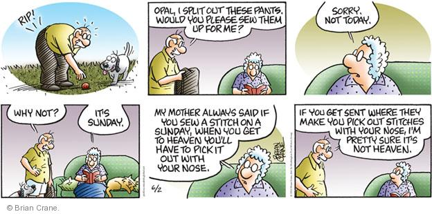Comic Strip Brian Crane  Pickles 2013-06-02 rip