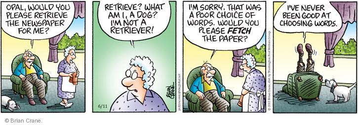 Comic Strip Brian Crane  Pickles 2013-06-11 fetch