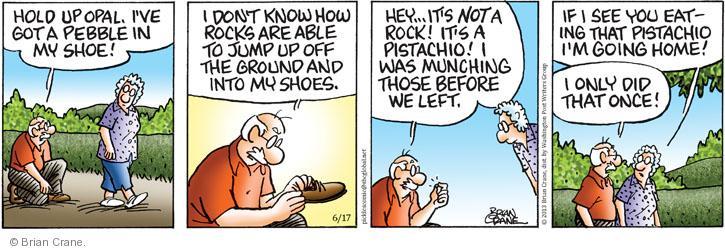 Comic Strip Brian Crane  Pickles 2013-06-17 nut