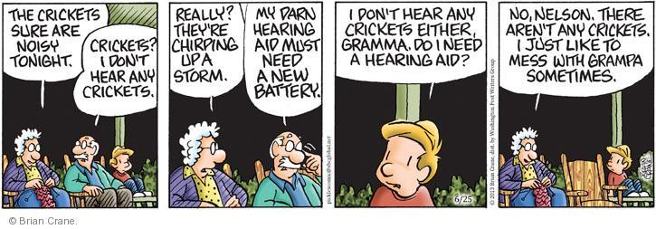 Comic Strip Brian Crane  Pickles 2013-06-25 aid