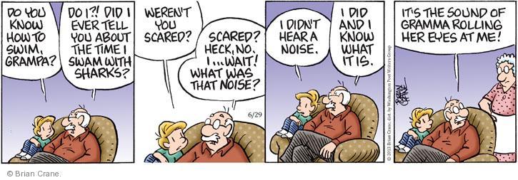 Comic Strip Brian Crane  Pickles 2013-06-29 no memory