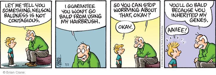 Comic Strip Brian Crane  Pickles 2013-07-02 hair loss