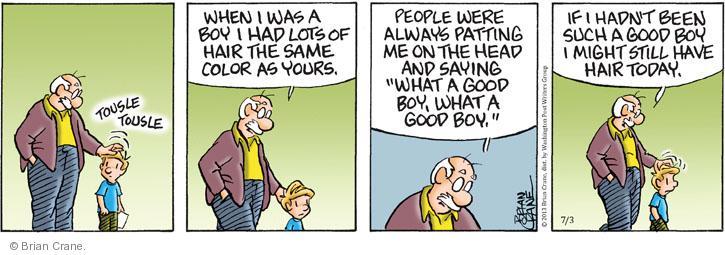 Comic Strip Brian Crane  Pickles 2013-07-03 hair loss