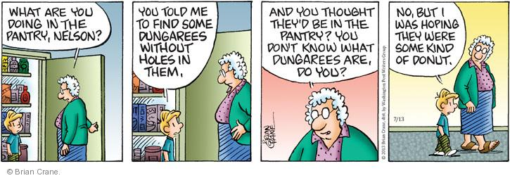 Comic Strip Brian Crane  Pickles 2013-07-13 generational