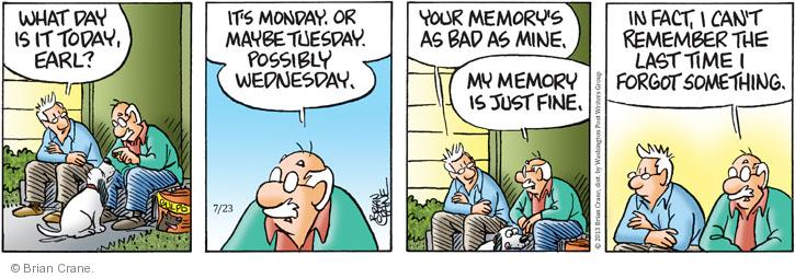 Comic Strip Brian Crane  Pickles 2013-07-23 bad memory