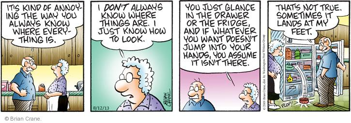 Comic Strip Brian Crane  Pickles 2013-08-12 drawer
