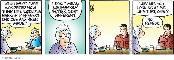 Comic Strip Brian Crane  Pickles 2013-08-21 choice