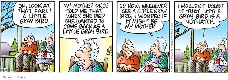 Comic Strip Brian Crane  Pickles 2013-08-24 mother-in-law