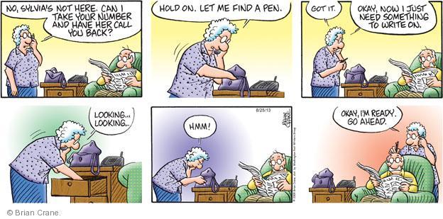 Comic Strip Brian Crane  Pickles 2013-08-25 number
