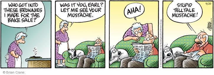Comic Strip Brian Crane  Pickles 2013-09-20 brownie